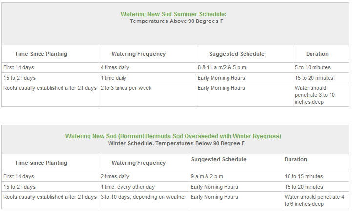 Sod Watering Guidelines